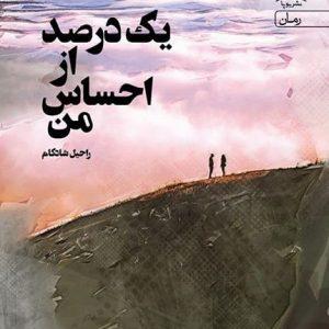 رمان یک درصد از احساس من